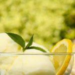 מתכון לסורבה לימון ונענע
