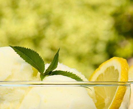 מתכון לסורבה לימון