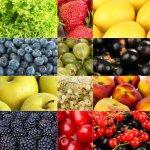 מתכון לגלידת פירות בסיסית – במכונת Unold